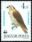 Cl: Saker Falcon (Falco cherrug) <<Kerecsens&oacute;lyom>> (Repeat for this country)  SG 3511 (1983) 80