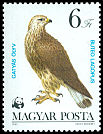 Cl: Rough-legged Hawk (Buteo lagopus) <<Gaty&aacute;s &ouml;lyv>>  SG 3512 (1983) 150