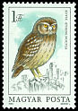 Cl: Little Owl (Athene noctua) <<Kuvik>>  SG 3601 (1984) 65