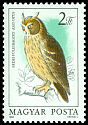 Cl: Northern Long-eared Owl (Asio otus) <<Erdei f&uuml;lesbagoly>>  SG 3603 (1984) 110