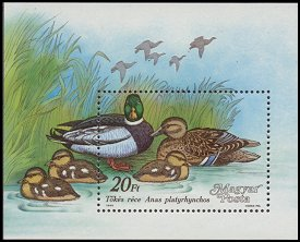 Cl: Mallard (Anas platyrhynchos) <<Tokes rece>> (Repeat for this country)  SG 3856 (1988) 500 [2/1]