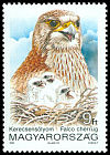 Cl: Saker Falcon (Falco cherrug) <<Kerecsens&oacute;lyom>> (Repeat for this country)  SG 4099 (1992) 35