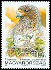 Cl: Booted Eagle (Aquila pennata) <<T&ouml;rpesas>>  SG 4100 (1992) 35