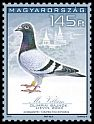 Cl: Rock Pigeon (Columba livia)(I do not have this stamp)  SG 5487 (2015)