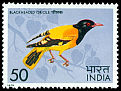 Cl: Black-hooded Oriole (Oriolus xanthornus) SG 764 (1975) 125
