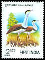 Cl: Indian Bustard (Ardeotis nigriceps) SG 986 (1980) 100
