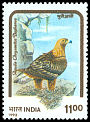 Cl: Golden Eagle (Aquila chrysaetos daphanea) SG 1528 (1992) 150