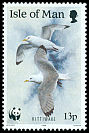 Cl: Black-legged Kittiwake (Rissa tridactyla)(Repeat for this country)  SG 423 (1989) 80