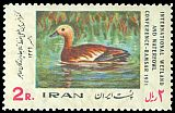 Cl: Ruddy Shelduck (Tadorna ferruginea) SG 1652 (1971) 50