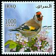 Cl: European Goldfinch (Carduelis carduelis)(Repeat for this country)  SG 2477i04 (2015)  [9/30]