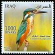 Cl: Common Kingfisher (Alcedo atthis)(Repeat for this country)  SG 2478i05 (2015)  [9/30]