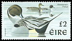 Cl: Northern Pintail (Anas acuta) SG 1061 (1997) 350