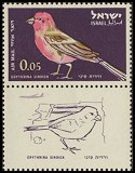 Cl: Pale Rosefinch (Carpodacus synoicus)(Repeat for this country)  SG 244 (1963) 10 [2/24]
