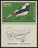 Cl: Mourning Wheatear (Oenanthe lugens)(Repeat for this country)  SG 246 (1963) 15 [2/24]