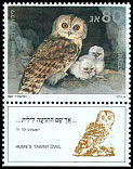Cl: Hume's Owl (Strix butleri) SG 1018 (1987) 150