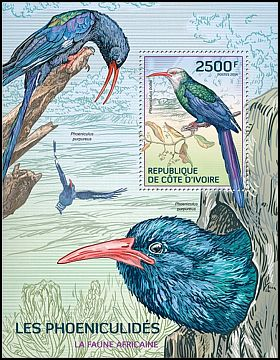 Cl: White-headed Woodhoopoe (Phoeniculus bollei)(I do not have this stamp)  new (2014)