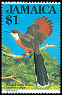 Cl: Jamaican Lizard-Cuckoo (Saurothera vetula)(Endemic or near-endemic)  SG 568 (1983) 110