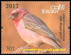 Cl: Pale Rosefinch (Carpodacus synoicus)(Repeat for this country)  new (2017)  [11/33]
