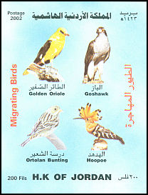 Cl: Northern Goshawk (Accipiter gentilis) SG 2034 (2002) 1250