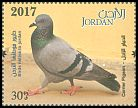 Cl: Rock Pigeon (Columba livia)(Repeat for this country)  new (2017)  [11/33]