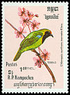 Cl: Golden-fronted Leafbird (Chloropsis aurifrons inornata) SG 511 (1984) 160