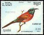 Cl: Northern Carmine Bee-eater (Merops nubicus)(Out of range)  SG 823 (1987) 20