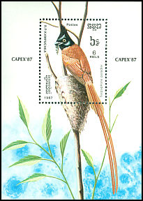 Cl: Asian Paradise-Flycatcher (Terpsiphone paradisi) SG 830 (1987) 650