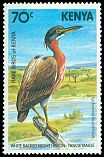 Cl: White-backed Night-Heron (Gorsachius leuconotus) <<Yangeyange>>  SG 303 (1984) 150
