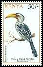 Cl: Eastern Yellow-billed Hornbill (Tockus flavirostris) <<Fumbi-njano>>  SG 601 (1993) 100