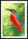 Cl: Common Kingfisher (Alcedo atthis) SG 141 (1998)