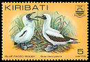 Cl: Masked Booby (Sula dactylatra) SG 166 (1982) 20