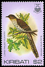 Cl: Long-tailed Koel (Eudynamys taitensis) SG 177 (1982) 90