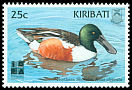 Cl: Northern Shoveler (Anas clypeata)(Repeat for this country)  SG 575 (1999) 20