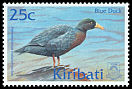 Cl: Blue Duck (Hymenolaimus malacorhynchos)(Out of range)  SG 624 (2001)