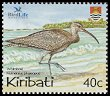 Cl: Whimbrel (Numenius phaeopus) SG 698 (2004)  [2/27]