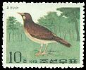 Cl: White-cheeked Starling (Sturnus cineraceus) SG 1209 (1973) 40