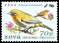 Cl: Chestnut-flanked White-eye (Zosterops erythropleurus) new (2012)  [11/3]
