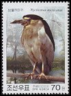 Cl: Black-crowned Night-Heron (Nycticorax nycticorax) SG 4325 (2003)  [2/21]