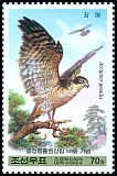 Cl: Northern Goshawk (Accipiter gentilis)(Repeat for this country)  SG 4837 (2009)  [6/12]