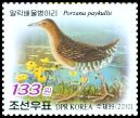 Cl: Band-bellied Crake (Porzana paykullii) SG 4920 (2010)  [6/36]