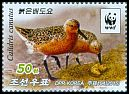 Cl: Red Knot (Calidris canutus)(Repeat for this country)  new (2015)  [10/10]