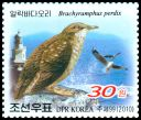 Cl: East Siberian Gull (Larus vegae)(Repeat for this country)  SG 4918 (2010)  [6/36]