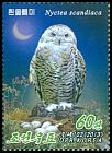 Cl: Snowy Owl (Bubo scandiaca)(Repeat for this country)  new (2013)  [5/48]