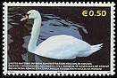 Cl: Mute Swan (Cygnus olor)(not catalogued)  (2006)