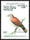 Cl: Mountain Imperial-Pigeon (Ducula badia) SG 1098 (1988)