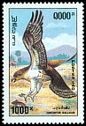 Cl: Short-toed Eagle (Circaetus gallicus) SG 1359 (1993)