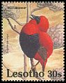 Cl: Red Bishop (Euplectes orix)(Repeat for this country)  SG 1078 (1992)