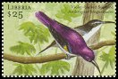 Cl: Western Violet-backed Sunbird (Anthreptes longuemarei)(Out of range)  new (2001)  [2/10]