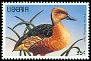 Cl: Fulvous Whistling-Duck (Dendrocygna bicolor)(Repeat for this country)  new (1996) 15