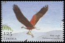 Cl: African Fish-Eagle (Haliaeetus vocifer)(Repeat for this country)  new (2001)  [2/12]